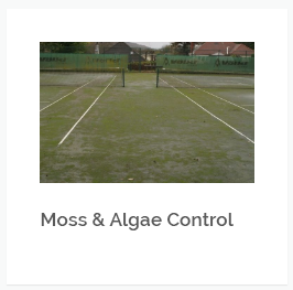 Removal of moss and algae